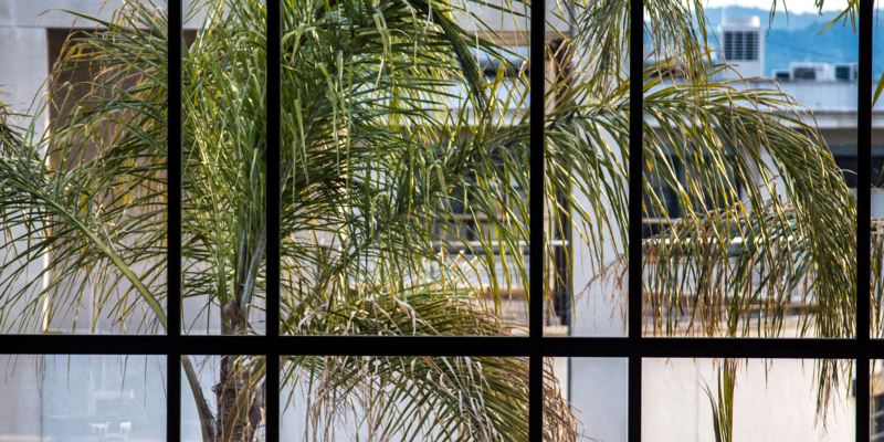 Imagen detalle de la estructura de las ventanas